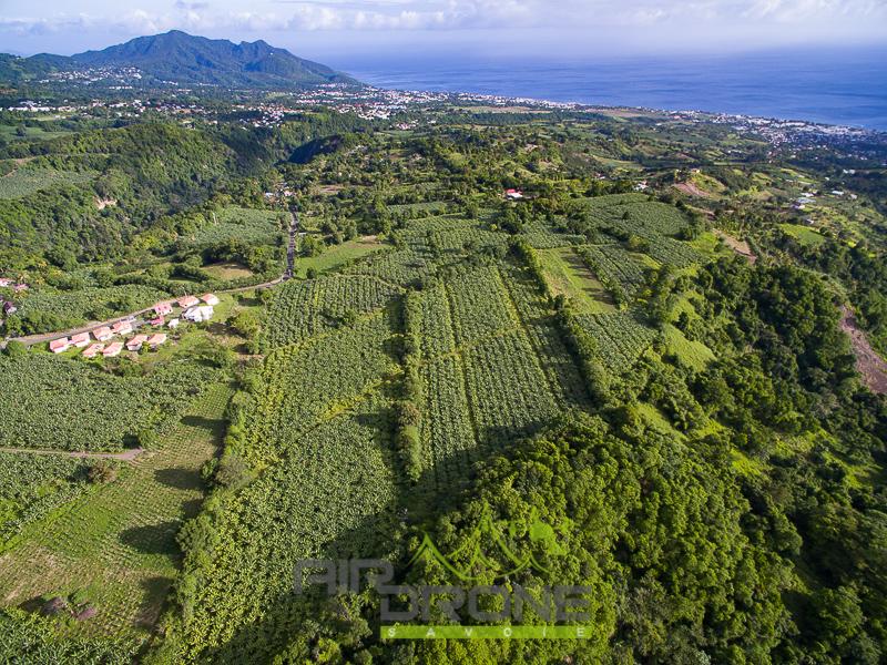 Propriété agricole en Guadeloupe