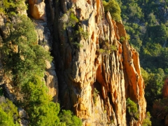 Corse Nature